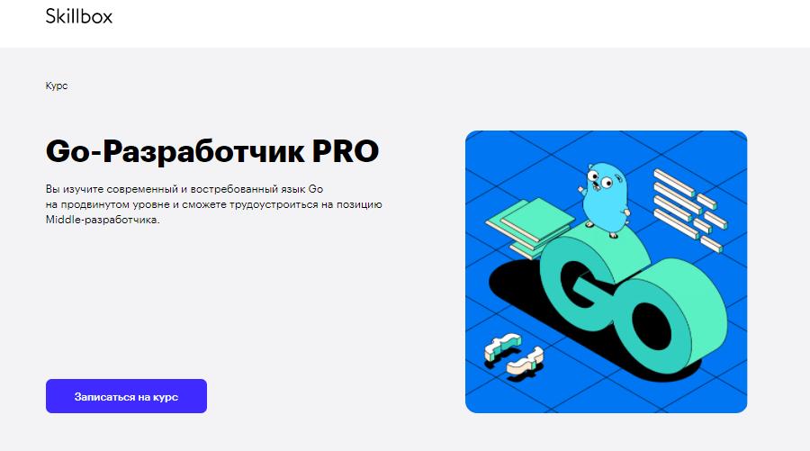 Курс Go-Разработчик PRO-уровня от Skillbox