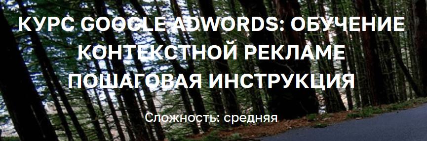 «Курс Google Adwords: обучение контекстной рекламе пошаговая инструкция» от Полины Авериной